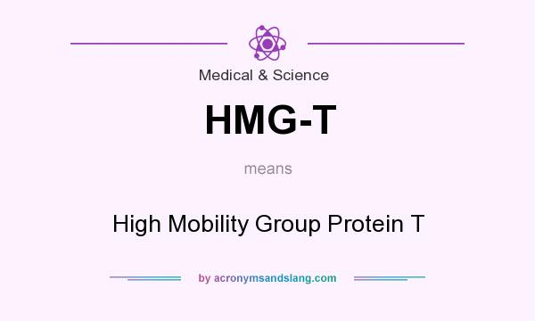 What does HMG-T mean? It stands for High Mobility Group Protein T