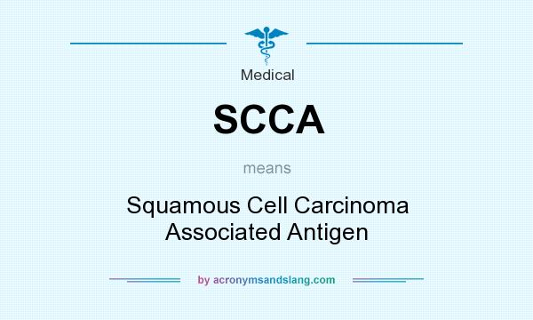 what does squamous mean in medical terms