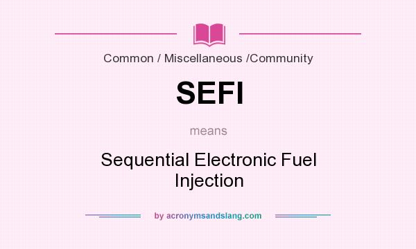 What does SEFI mean? It stands for Sequential Electronic Fuel Injection