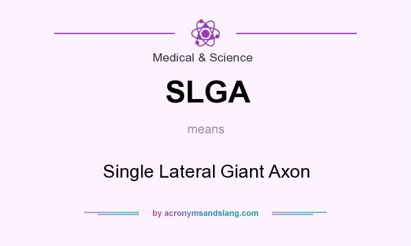 What does SLGA mean? It stands for Single Lateral Giant Axon