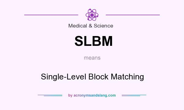 What does SLBM mean? It stands for Single-Level Block Matching