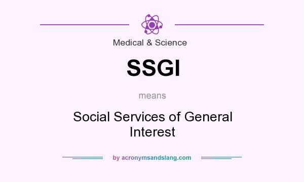 What does SSGI mean? It stands for Social Services of General Interest