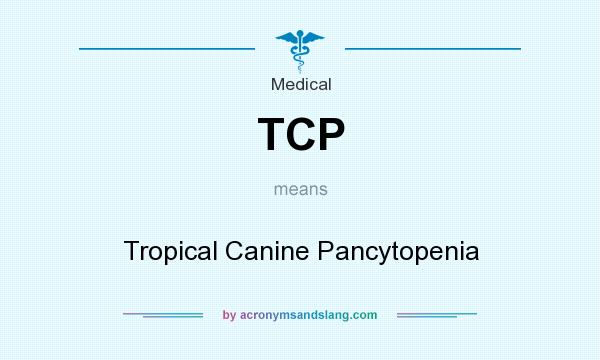 What does TCP mean? It stands for Tropical Canine Pancytopenia