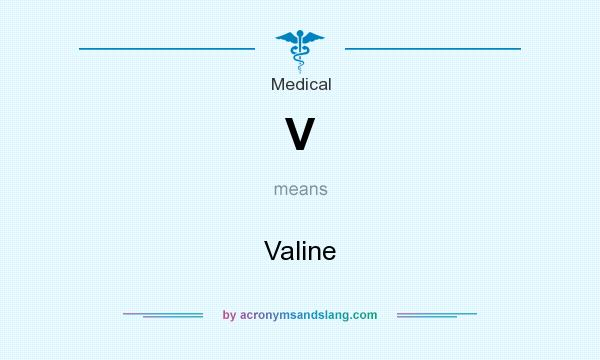 What does V mean? It stands for Valine