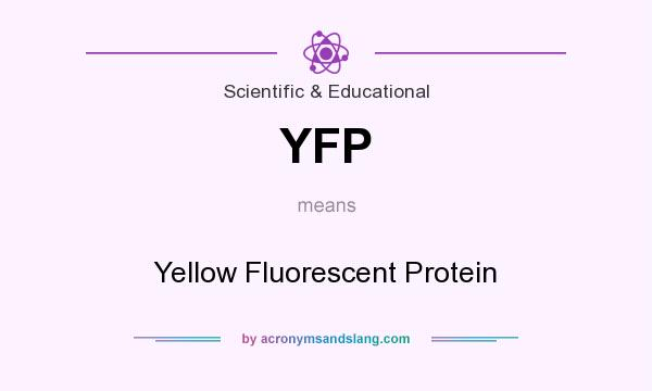 What does YFP mean? It stands for Yellow Fluorescent Protein