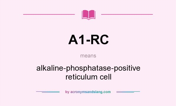 What does A1-RC mean? It stands for alkaline-phosphatase-positive reticulum cell