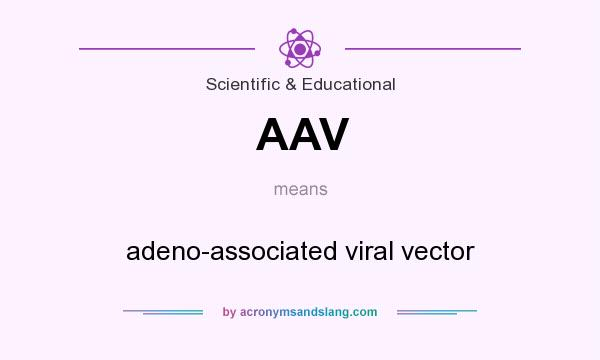 What does AAV mean? It stands for adeno-associated viral vector