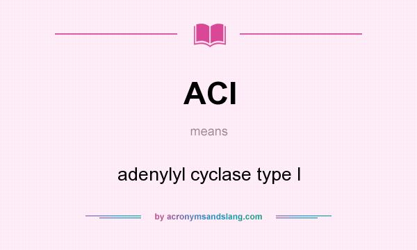 What does ACI mean? It stands for adenylyl cyclase type I
