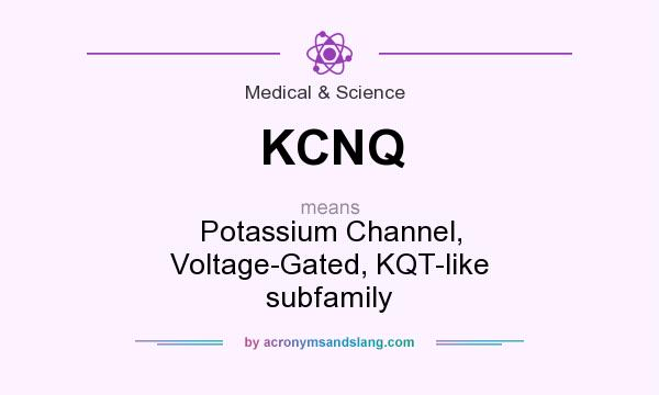 What does KCNQ mean? It stands for Potassium Channel, Voltage-Gated, KQT-like subfamily