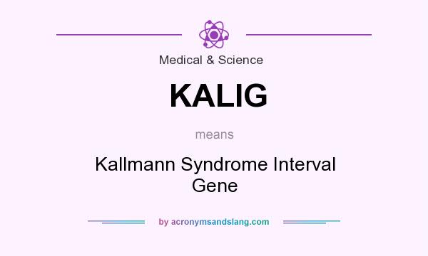 What does KALIG mean? It stands for Kallmann Syndrome Interval Gene