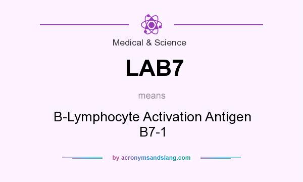 What does LAB7 mean? It stands for B-Lymphocyte Activation Antigen B7-1