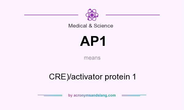 What does AP1 mean? It stands for CRE)/activator protein 1