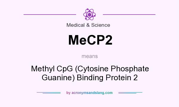What does MeCP2 mean? It stands for Methyl CpG (Cytosine Phosphate Guanine) Binding Protein 2
