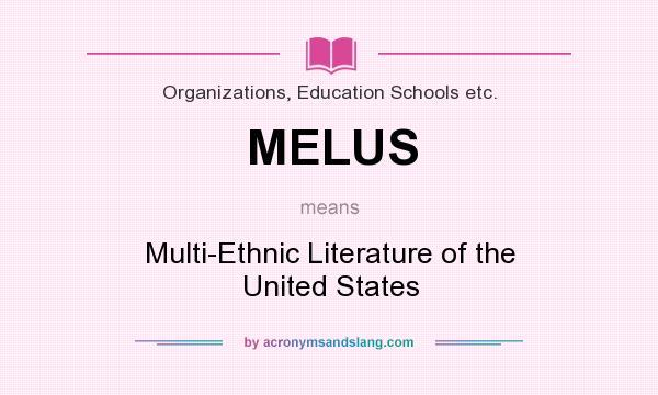 ethnic literature definition