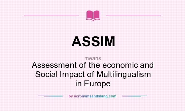 What does ASSIM mean? It stands for Assessment of the economic and Social Impact of Multilingualism in Europe