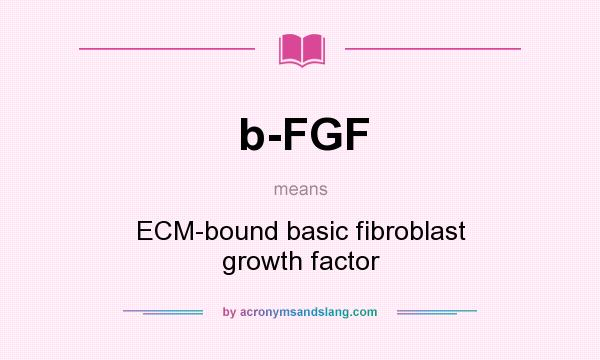 What does b-FGF mean? It stands for ECM-bound basic fibroblast growth factor