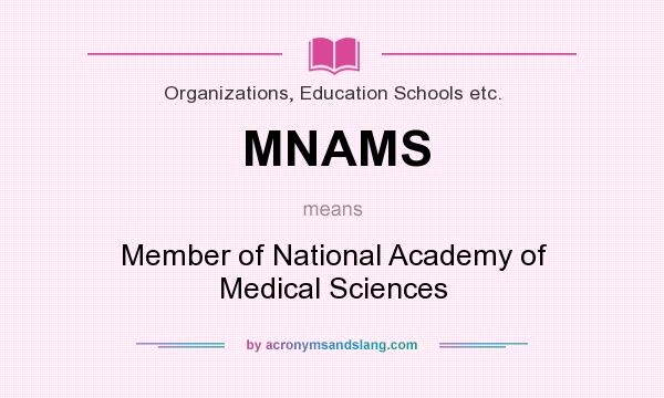 mnas search for meaning