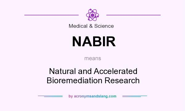 What does NABIR mean? It stands for Natural and Accelerated Bioremediation Research