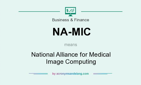 What does NA-MIC mean? It stands for National Alliance for Medical Image Computing