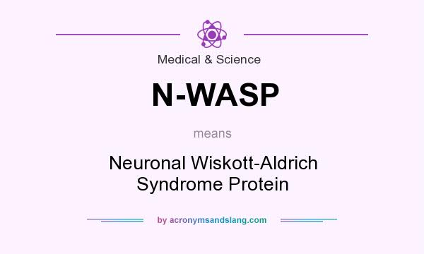 What does N-WASP mean? It stands for Neuronal Wiskott-Aldrich Syndrome Protein