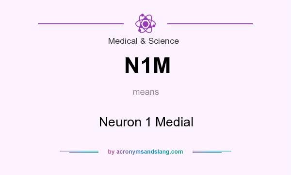 What does N1M mean? It stands for Neuron 1 Medial