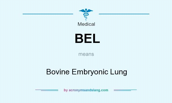 What does BEL mean? It stands for Bovine Embryonic Lung