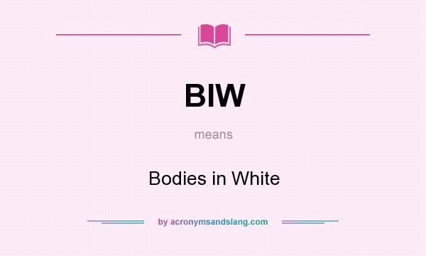 What does BIW mean? It stands for Bodies in White