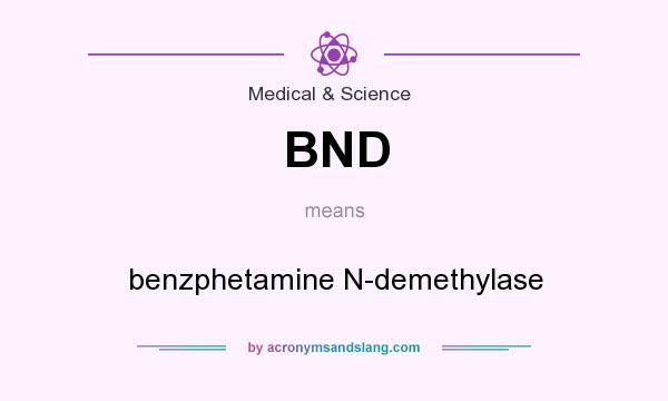 What does BND mean? It stands for benzphetamine N-demethylase