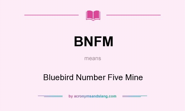 What does BNFM mean? It stands for Bluebird Number Five Mine