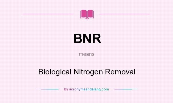 What does BNR mean? It stands for Biological Nitrogen Removal