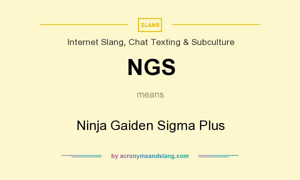 What does NGS mean? It stands for Ninja Gaiden Sigma Plus