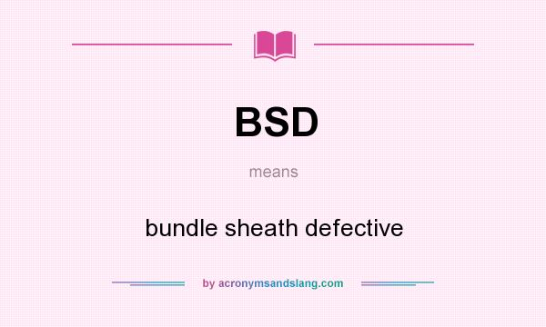 What does BSD mean? It stands for bundle sheath defective