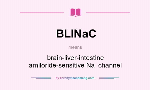 What does BLINaC mean? It stands for brain-liver-intestine amiloride-sensitive Na  channel