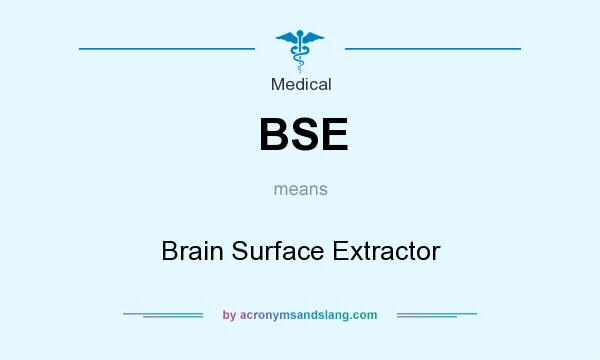 What does BSE mean? It stands for Brain Surface Extractor