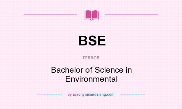 What does BSE mean? It stands for Bachelor of Science in Environmental