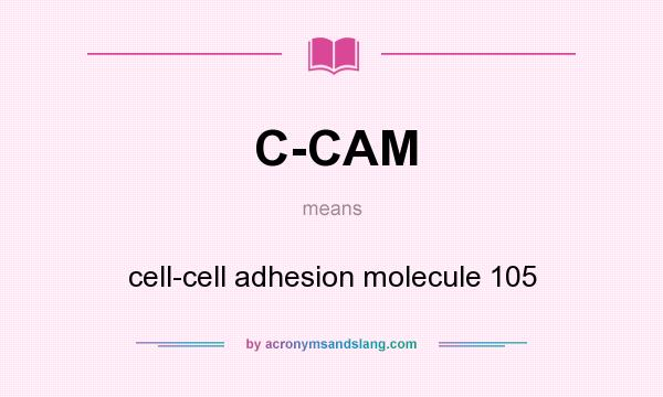 What does C-CAM mean? It stands for cell-cell adhesion molecule 105