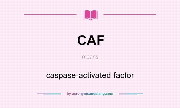 What does CAF mean? It stands for caspase-activated factor