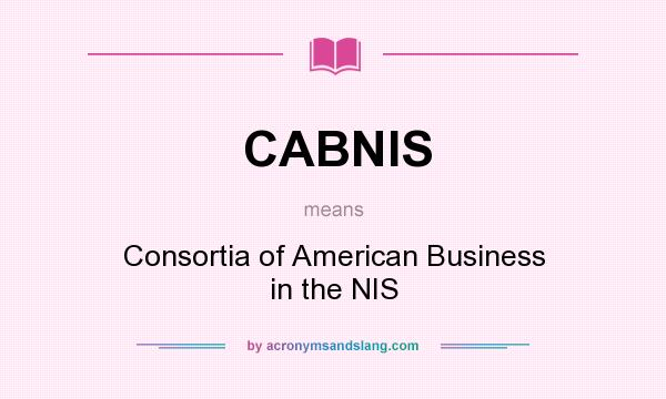 What does CABNIS mean? It stands for Consortia of American Business in the NIS