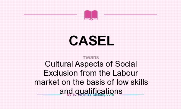 What does CASEL mean? It stands for Cultural Aspects of Social Exclusion from the Labour market on the basis of low skills and qualifications
