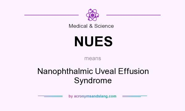 Definition Of NUES   NUES Stands For Nanophthalmic Uveal Effusion Syndrome.  By AcronymsAndSlang.com