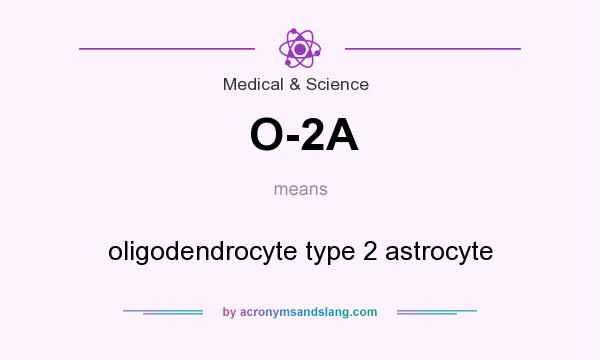What does O-2A mean? It stands for oligodendrocyte type 2 astrocyte