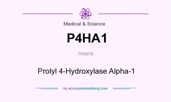 What does P4HA1 mean? It stands for Prolyl 4-Hydroxylase Alpha-1