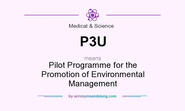What does P3U mean? It stands for Pilot Programme for the Promotion of Environmental Management