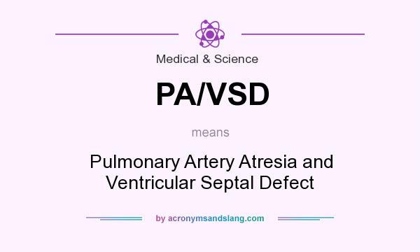 What does PA/VSD mean? It stands for Pulmonary Artery Atresia and Ventricular Septal Defect