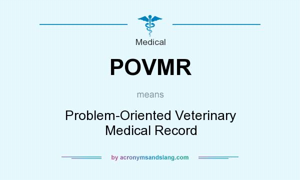 What does POVMR mean? It stands for Problem-Oriented Veterinary Medical Record