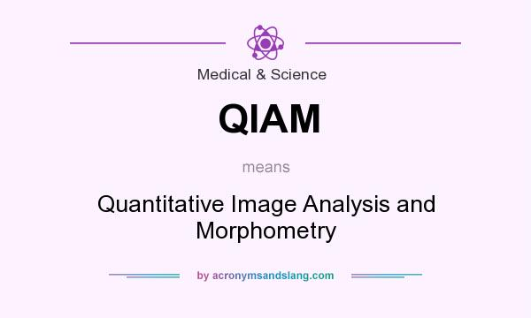 What does QIAM mean? It stands for Quantitative Image Analysis and Morphometry