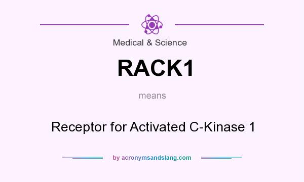 What does RACK1 mean? It stands for Receptor for Activated C-Kinase 1