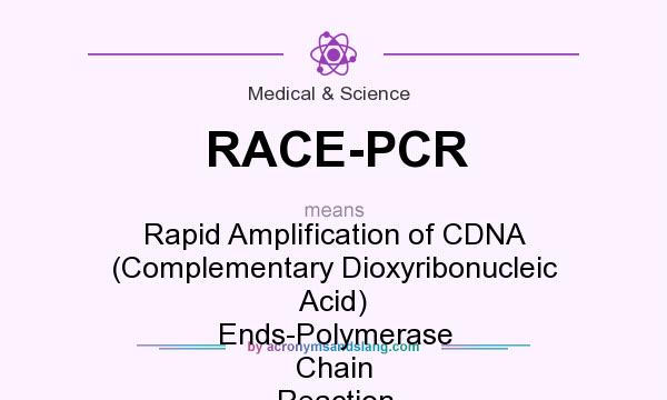 What does RACE-PCR mean? It stands for Rapid Amplification of CDNA (Complementary Dioxyribonucleic Acid) Ends-Polymerase Chain Reaction