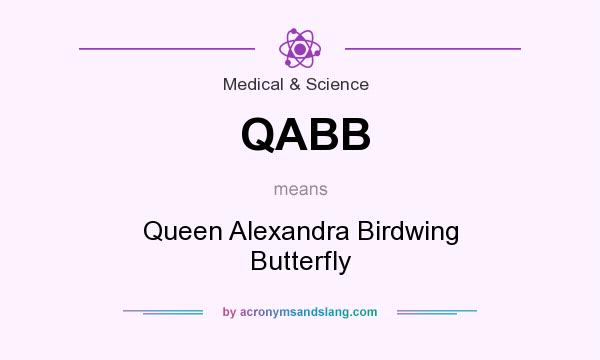 What does QABB mean? It stands for Queen Alexandra Birdwing Butterfly