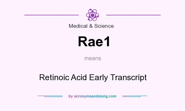 What does Rae1 mean? It stands for Retinoic Acid Early Transcript